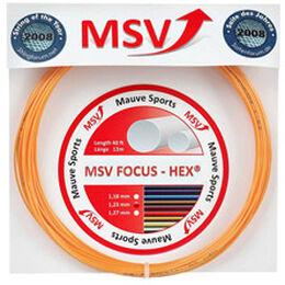 Focus-HEX 12m gold