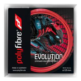Evolution 12m (2+1 Aktion)